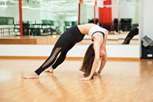 Фото Фитнес Гимнастика Шатенка Физические упражнения Ноги Руки Девушки Спорт