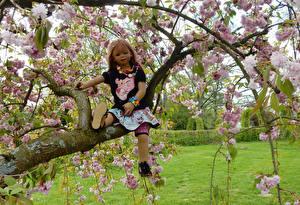 Обои Германия Парки Весенние Цветущие деревья Кукла Девочки Ветки Grugapark Essen Природа