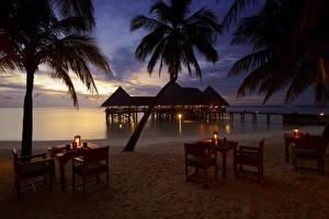 Обои Мальдивы Побережье Вечер Тропики Бунгало Пальмы Стол Стулья Пляж Gili Lankanfushi