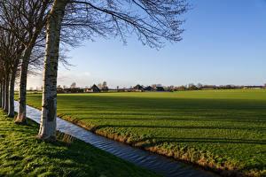 Обои Нидерланды Поля Водный канал Деревья Oudendijk Природа