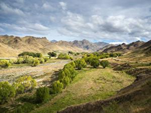 Обои Новая Зеландия Холмы Деревья Облака Severn Marlborough Природа
