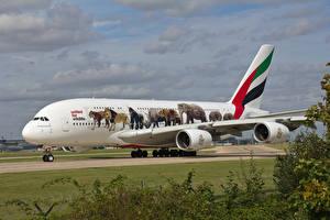 Картинки Самолеты Пассажирские Самолеты Эйрбас A380-800