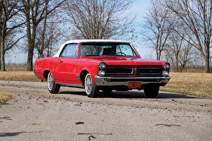 Обои Понтиак Винтаж Красный Металлик 1965 Tempest LeMans Convertible Авто