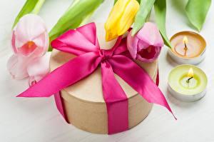 Обои Тюльпаны Свечи Подарки Бантик
