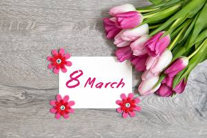 Картинки Тюльпаны 8 марта Праздники Английский Цветы