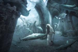 Фото Подводный мир Акулы Черепахи Пожилой мужчина Посоха Фэнтези