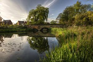 Фото Великобритания Река Мосты Деревья Трава Barlaston Природа