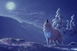 Фотография Волки Рисованные Зимние Волшебные животные Снег Ночные Луна Фантастика