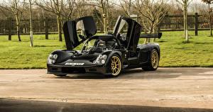 Картинка Черный Металлик 2015-17 Ultima Evolution Coupe Авто