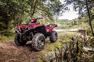 Фото ATV 2017 Yamaha Grizzly 700 EPS  Limited Edition