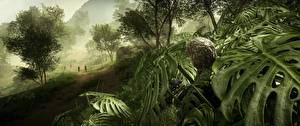 Обои Battlefield 4 Снайперская винтовка Снайперы Камуфляж 3D_Графика