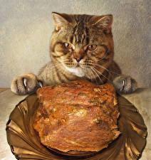 Фотография Кошка Мясные продукты Тарелка Смотрят Забавные Животные