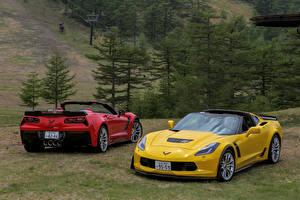 Фото Шевроле Двое Кабриолет Металлик 2015–17 Corvette Z06