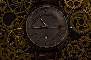 Картинки Часы Циферблат Крупным планом Зубчатое колесо