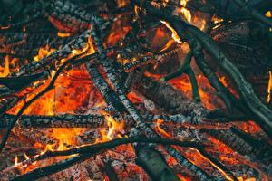 Фотографии Вблизи Огонь Костер Ветвь Тлеющие угли