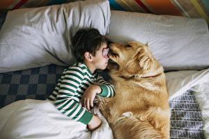 Картинка Собаки Мальчики Спит Двое Язык (анатомия) Милые Подушки Дети Животные