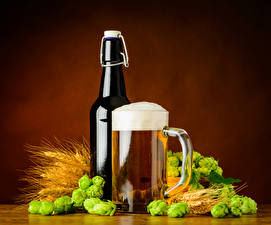 Картинки Напиток Пиво Хмель Кружка Бутылка Пена Колосок Продукты питания