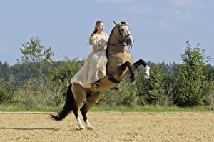 Обои Верховая езда Лошади Платья Спорт Девушки