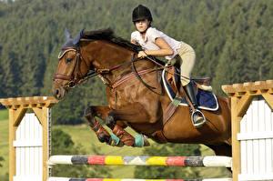 Фотографии Конный спорт Лошади В прыжке спортивная Девушки