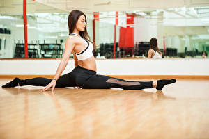 Обои для рабочего стола Фитнес Шатенка Тренировка Ноги Шпагат молодая женщина Спорт