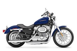 Обои Xарлей дэвидсон Белый фон Сбоку 2007 XL883L Sportster Low Мотоциклы