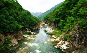 Картинки Япония Парк Речка Скале Nikko National Park Ryuokyo Природа