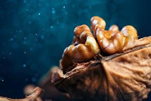Фотографии Макросъёмка Вблизи Орехи Walnut Пища