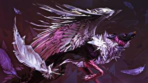 Фотография Волшебные животные Перья Крылья Фантастика