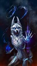 Картинка Волшебные животные Волшебство