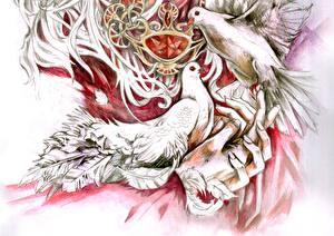 Фотография Голубь Рисованные Животные