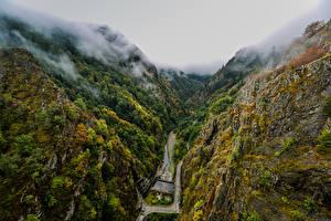 Фото Румыния Горы Леса