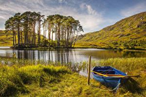 Фотография Шотландия Озеро Лодки Осень Деревья Трава Природа