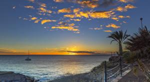 Фотографии Испания Побережье Рассветы и закаты Море Пейзаж Канары Пальмы Playa Fanabe Природа