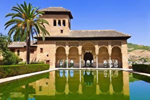 Картинка Испания Здания Парки Плавательный бассейн Пальма Alhambra de Granada город