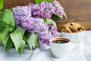 Фотографии Натюрморт Сирень Кофе Печенье Чашка Пища Цветы