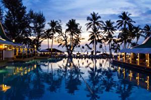 Фотография Таиланд Курорты Тропический Вечер Бассейны Пальмы Phuket Природа