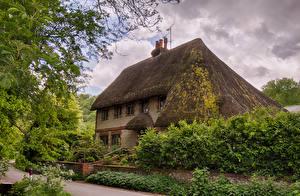 Картинка Великобритания Здания Крыша Кусты Selborne  Hampshire Города