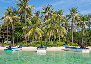 Картинка Вьетнам Тропики Побережье Лодки Пальмы An Thoi Islands Природа