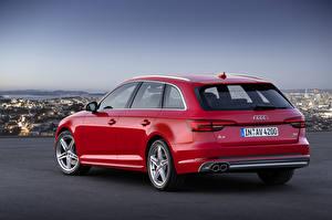 Фотография Audi Красная Сзади Универсал Металлик TDI quattro Avant, 2015 S line