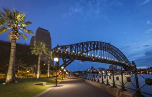 Картинка Австралия Мосты Вечер Речка Сидней Пальмы Уличные фонари Ограда Набережная