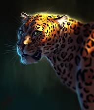 Картинки Большие кошки Леопарды Рисованные Голова Смотрит Усы Вибриссы Животные
