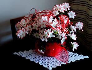 Фото обой цветы орхидеи 152