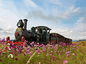 Фотографии Космея Поезда Винтаж