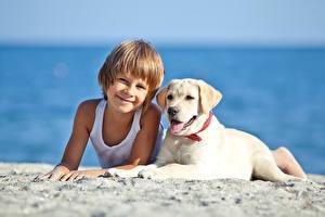 Обои Собаки Пляж Мальчики Улыбка Ретривер Язык (анатомия) Ребёнок Животные