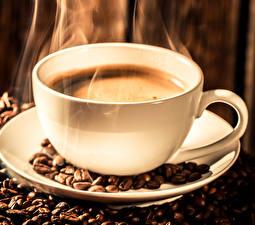 Фотографии Напитки Кофе Чашка Зерна Пища