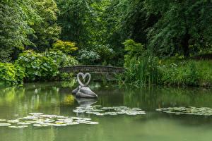 Обои Англия Парки Пруд Скульптуры Лебеди Мосты Двое Кусты Wiltshire Природа