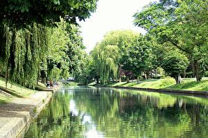 Фотография Англия Водный канал Деревья Royal military canal Hythe