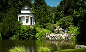 Фотографии Германия Парки Пруд Кусты Ели Bergpark Wilhelmshöhe Природа