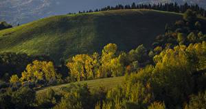 Фото Италия Луга Осень Деревья Холмы Penne Abruzzi