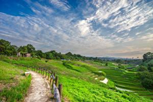 Фотографии Япония Поля Небо Облака Природа